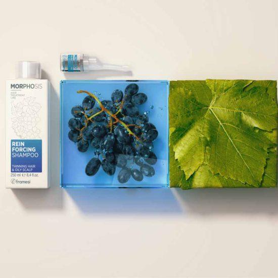 Reinforcing Shampoo & Activator